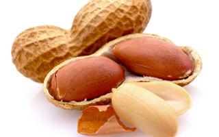 Бобы при диабете: можно ли, польза и вред, особенности употребления