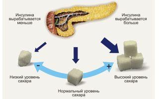 Глюкоза и Аскорбиновая кислота — можно ли принимать одновременно (совместимость)