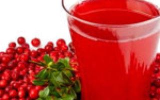 Брусника при сахарном диабете 2 и 1 типа: можно ли есть, листья и ягоды