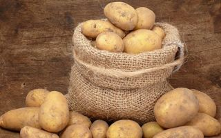 Картофель при сахарном диабете и 2 типа: можно ли печеный, вареный, сырой, сок, в мундире, пюре