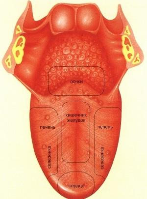 Красные пятна на языке – причины, лечение