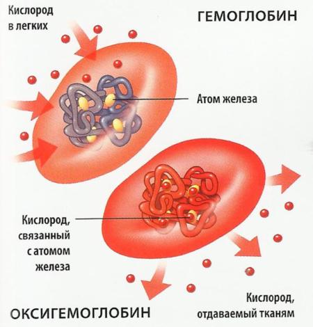 Аспарт (инсулин): инструкция по применению, цена, отзывы, аналоги