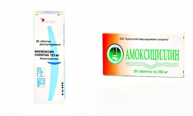 Сравнение Флемоксина и Амоксициллина