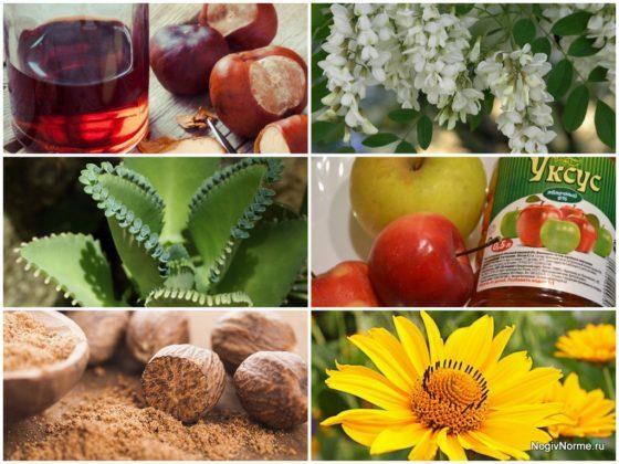 Лечение варикоза вен на ногах народными средствами: рецепты мазей, компрессы, настойки, сборы трав