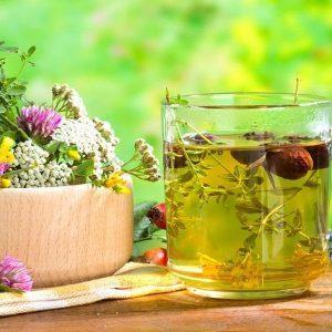 Фитотерапия при диабете сахарном 2 типа: список растений, рецепты