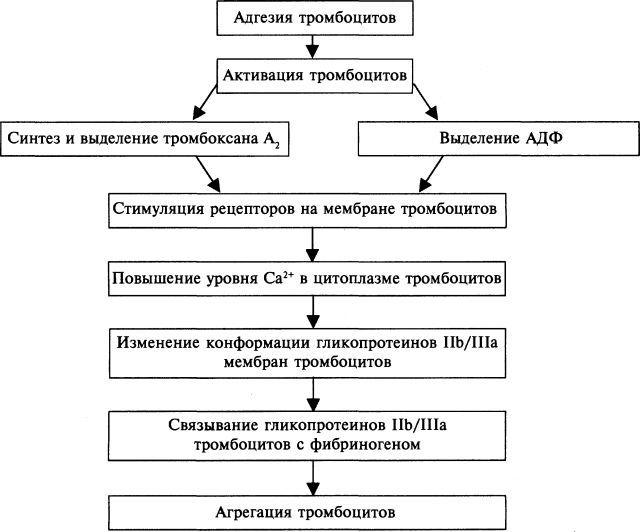 ТИКЛОПИДИН - инструкция по применению, цена, отзывы и аналоги