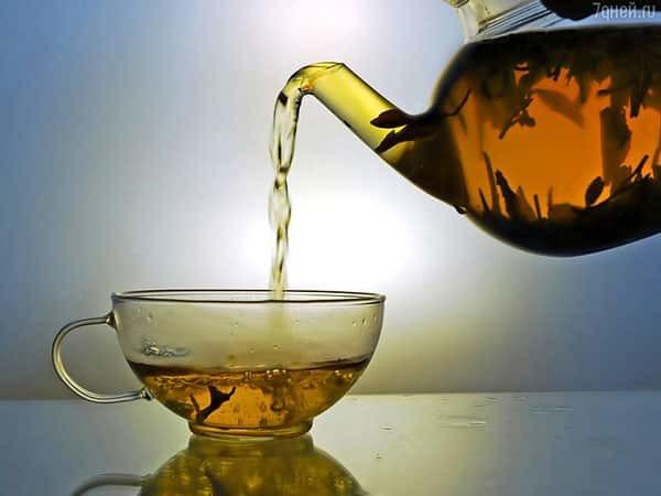 Козлятник при диабете сахарном: применение травы, как заварить, противопоказания, как пить