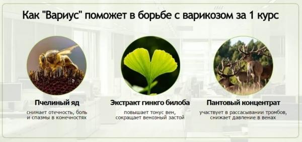 Средство от варикоза: гель Вариус из натуральных компонентов