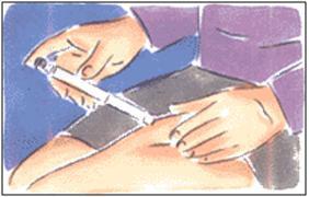 Инсулин это гормон: об инсулинотерапии, помповой и правилах